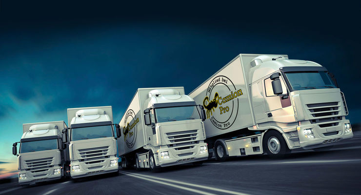Transportverband Camion Pro